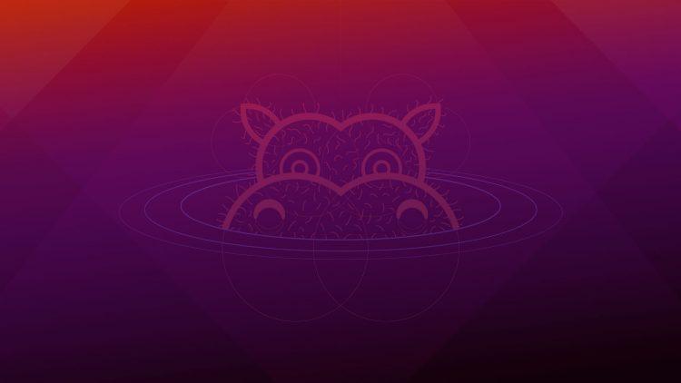 Ubuntu 21.04 Hirsute Hippo Wallpaper