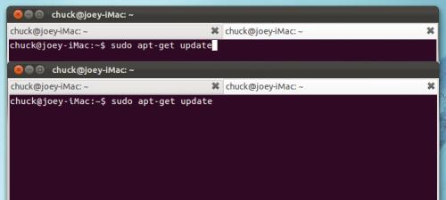 new ubuntu terminal font