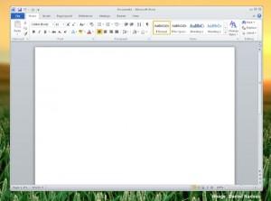 Microsoft Office Running Under WINE