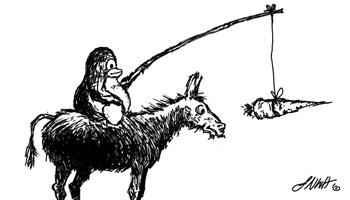 donkey-tux