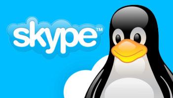 Skype plus tux linux mascot