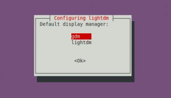 change display manager ubuntu