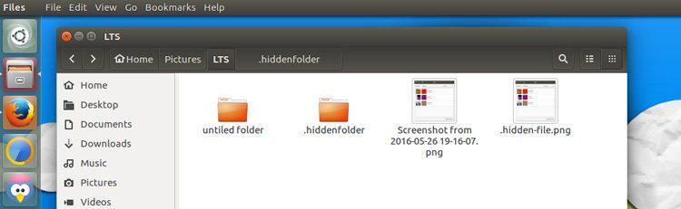 view hidden files in nautilus