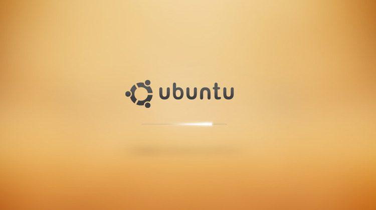 screenshot of an ubuntu xsplash