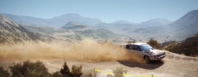 dirt rally linux screenshot