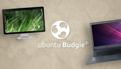 ubuntu budgie nimusoft deal?