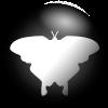 qqmp logo