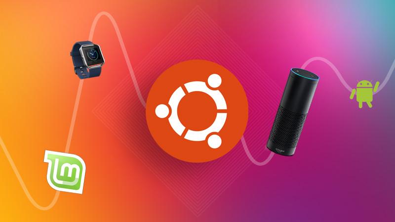 Ubuntu search trends