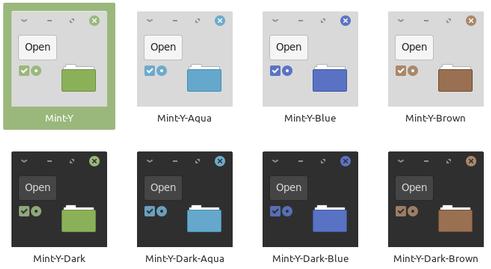 mint y color choices