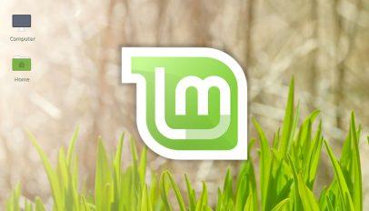 linux mint logo old