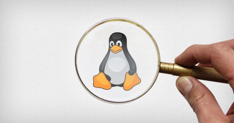 Linux privacy