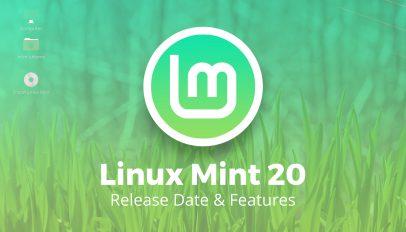 linux mint 20
