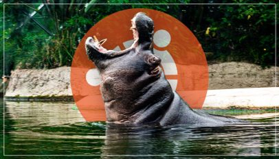 hippo and ubuntu logo