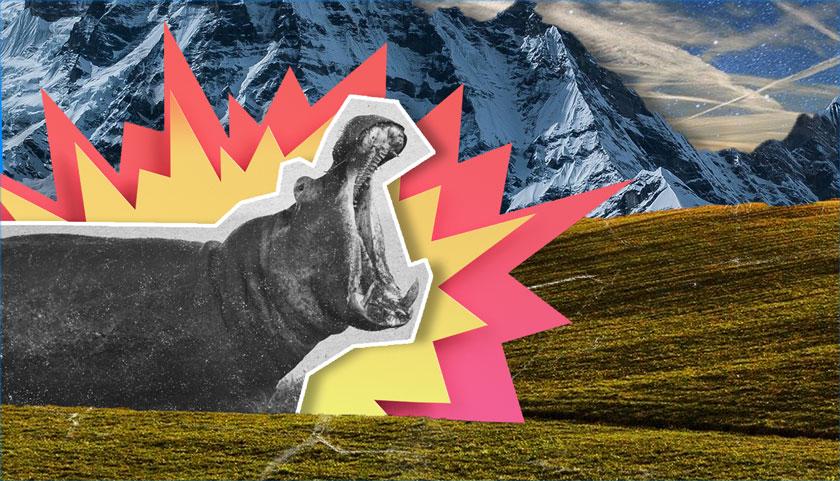 Ubuntu 21.04 Hippo