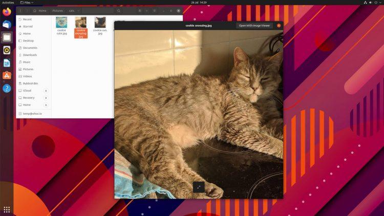 a screenshot of GNOME Sushi file preview displaying a photo on the ubuntu desktop