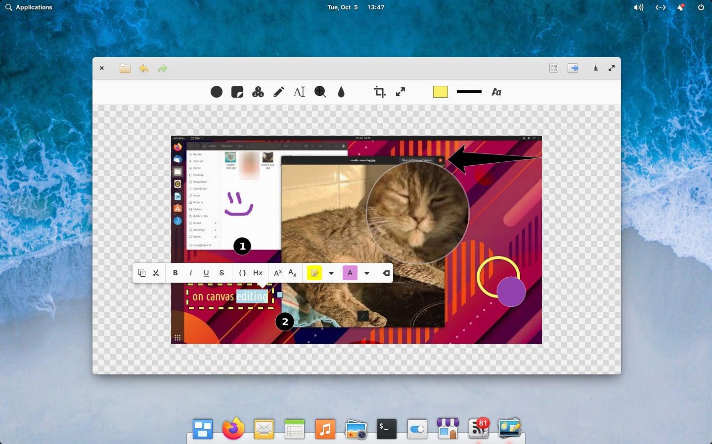 screenshot of annotator linux app