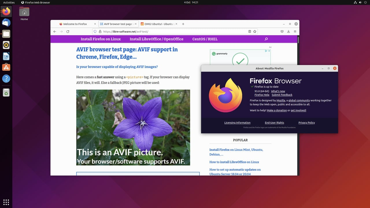 a screenshot of Firefox 93 showing an AVIF image successfully loaded